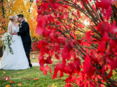 Debra + Luis – Trevor Booth Photography, Windsor Ontario based photographer